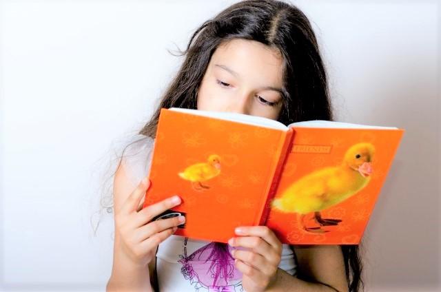 塾選びガイド-能力開発(英会話や速読など)-速読